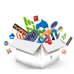 cms installatore automatico 300x300 - Hosting professionale e registrazione domini - Web Agency Napoli Flashex